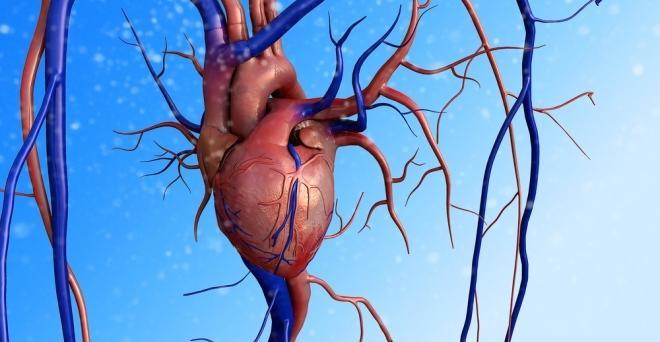 magas vérnyomás és idegek prolapsus és magas vérnyomás