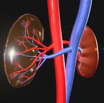 magas vérnyomás kezelése veseartéria szűkülettel magas vérnyomás dibazol