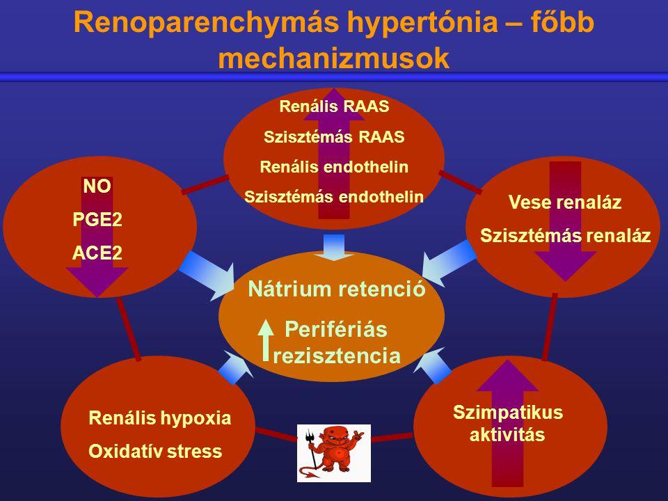 vese hipertónia mechanizmusa