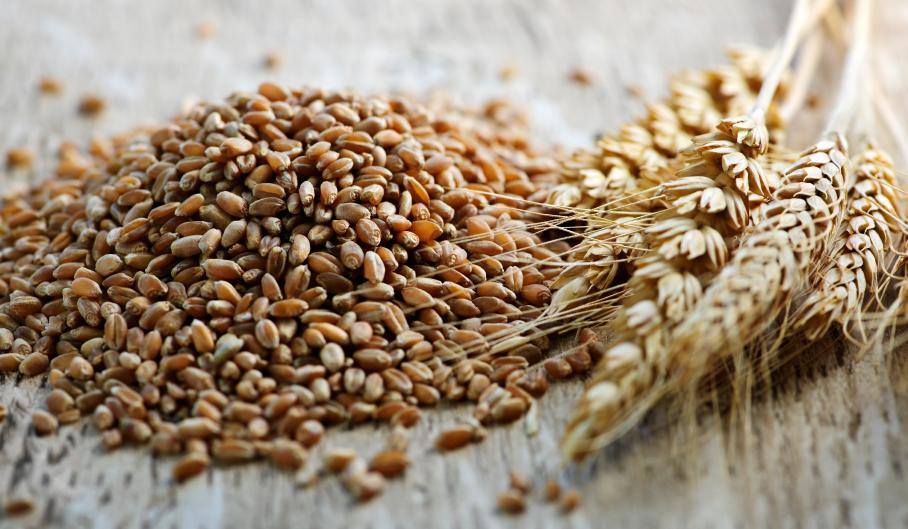 milyen gabonafélék fogyaszthatók magas vérnyomás esetén