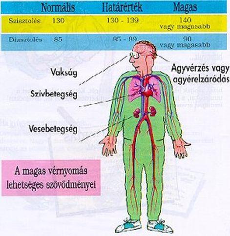 Hipertóniás betegek étrendje - muvkozpont.hu