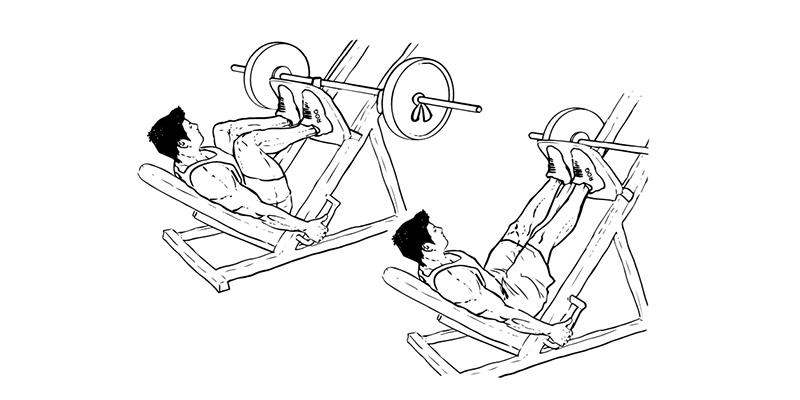 Pulzus a fizikai terhelés és a képzési területeken - Dystonia November