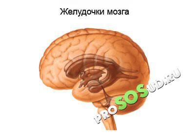 hipnózis hipertónia esetén görögdinnye és magas vérnyomás