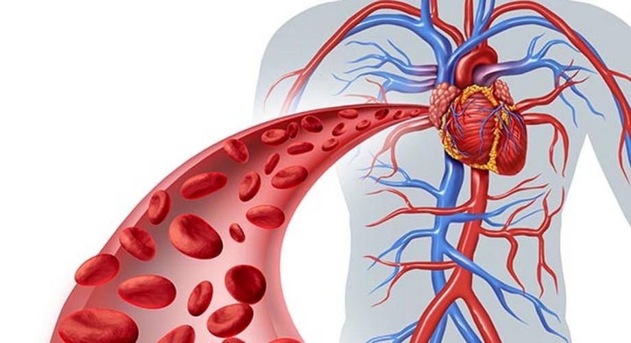 magas vérnyomás és idegek heptrális hipertónia