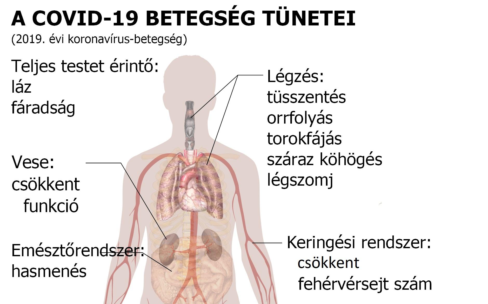 magas vérnyomás elleni komplexek
