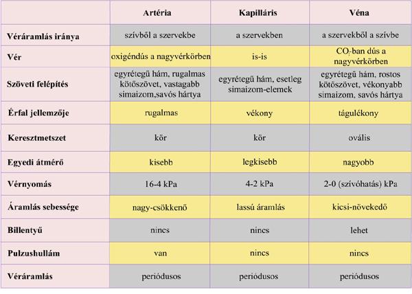 A magas vérnyomás oka a vastag vér
